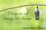 butterfly-with-change-quote